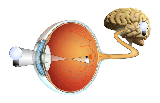 common retinal disorders longmont eye care blog